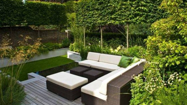 Top Tips for Creating a Stylish, Modern Garden